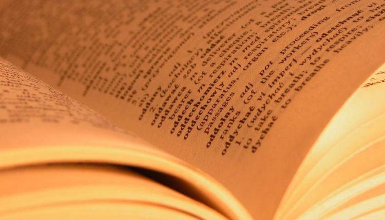 rc model sözlük